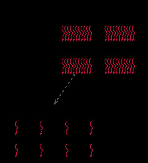 CUDA Neural Network Implementation (Part 1) - luniak io